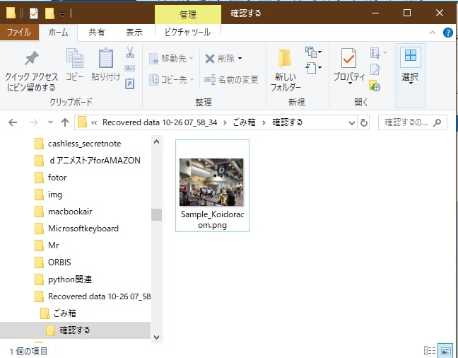 EaseUS Data Recovery Wizard復旧手順10